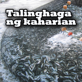 Talinghaga ng kaharian..( Parable of the kingdom )