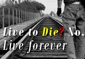 Live to Die- No, Liveforever