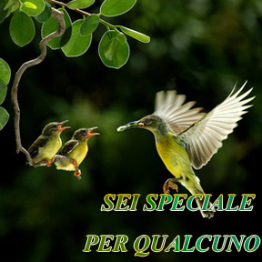 SEI SPECIALE PER QUALCUNO(Italian-you are someone special)
