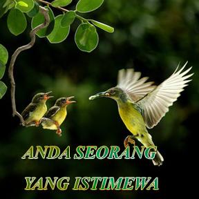 ANDA SEORANG YANG ISTIMEWA(Malay-someone special)