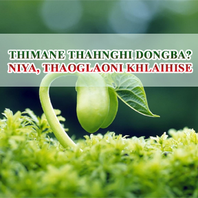 Thimane thahnghi dongba? Niya, thaoglaoni khlaihise (Live to die? No, live forever)