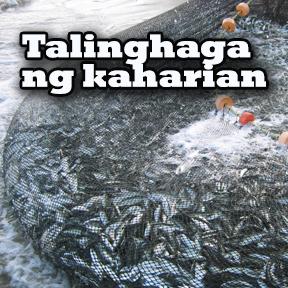 Talinghaga ng kaharian..( Parable of the kingdom )