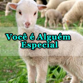 Você é Alguém Especial(Portuguese-Someone special)