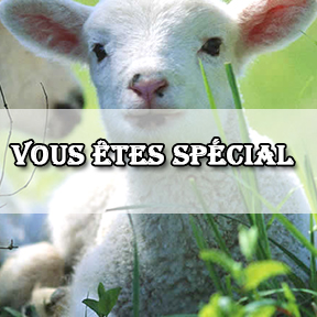 You are someone special-French