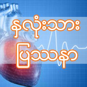 Burmese_The heart of the matter