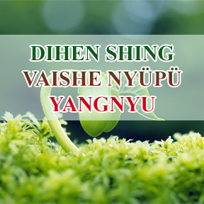 Dihen shing vaishe nyüpü yangnyu (live to Die/ No live for Ever)